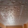 Stropní kazeta, stropní podhled - IMAG0202