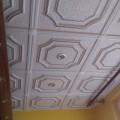 Stropní kazeta, stropní podhled - IMAG1073