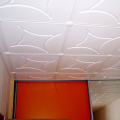Stropní kazeta, stropní podhled - P1010006